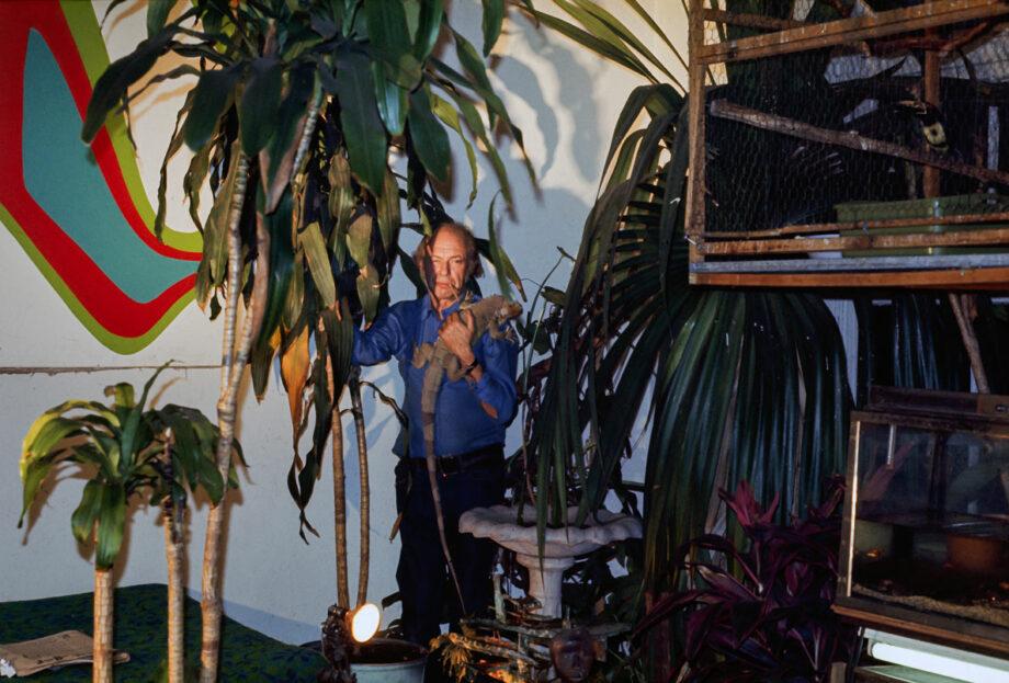 galerie-ahlers-albert-schoepflin-74-Dschungel