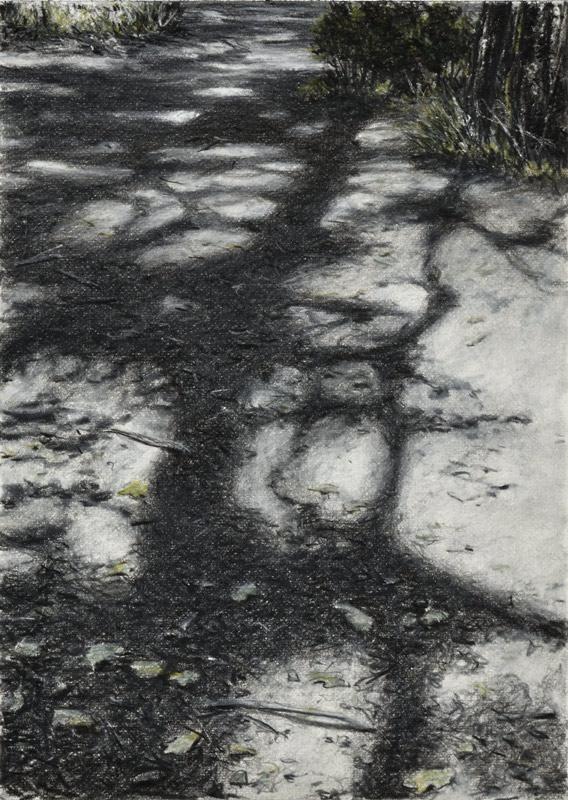galerie-ahlers-gerlinde-zantis-dépt-07-bois-de-païolive-XX-2020